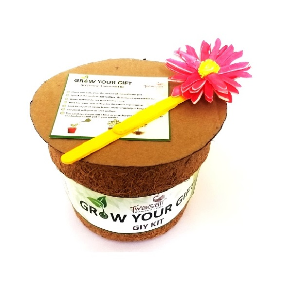 Twaksati Grow Your Gift - GIY Kit -Zinnia
